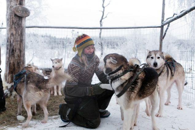 85 köpeğiyle yaban hayatın içinde bir kadın