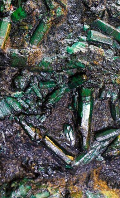 Brezilya'nın kuzeyindeki Carnaiba maden bölgesinde bulunan 300 milyon dolar değerindeki 'dev zümrüt'ün sahibi, 'kaçırılma, öldürülme' gibi güvenlik problemleri yüzünden kimliğini açıklayamıyor.