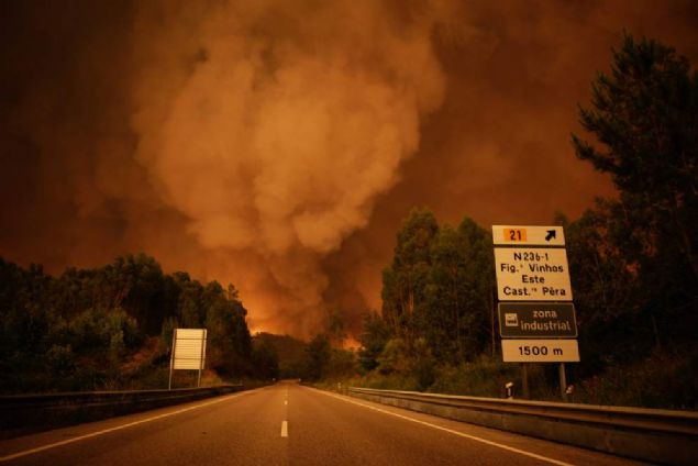 Portekiz'in orta kesimlerinde çıkan büyük bir orman yangınında en az 62 kişi öldü. Yetkililer, kurbanların çoğunun araçlarında yanarak can verdiğini bildirdi.