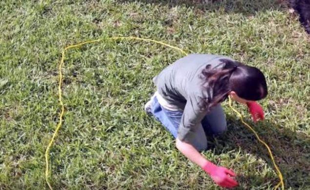 ABD'de yaşayan bir kadın, evinin bahçesine süs amaçlı yapay bir gölet yaptı.