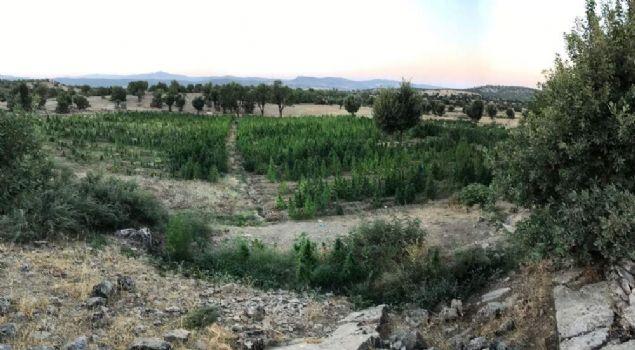 İl Jandarma Komutanlığınca, Hani, Lice ve Çermik ilçeleri kırsalında terör örgütü PKK'ya yönelik olarak 18 Ağustos saat 21.00'den itibaren istihbarata dayalı 'Bayrak-58 Şehit Jandarma Binbaşı Ümit Çelik' operasyonu başlatıldı. Operasyon kapsamında Çermik ilçesinde teröristlerin kullandığı 4 sığınakta silah, mühimmat, çok miktarda giyim ve yaşam malzemesi ele geçirildi.