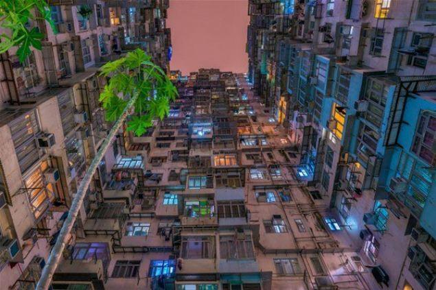 Çevre kirliliğine dikkat çekmek için CIWEM tarafından düzenlenen fotoğraf yarışmasının en iyileri belli oldu     <br><br>    Sınırlı ve dar dairelerde yaşayan Hong Kong sakinlerinin doğayla yeniden temas kurma ihtiyacını vurgulayan Huynh Thu'nun fotoğrafı
