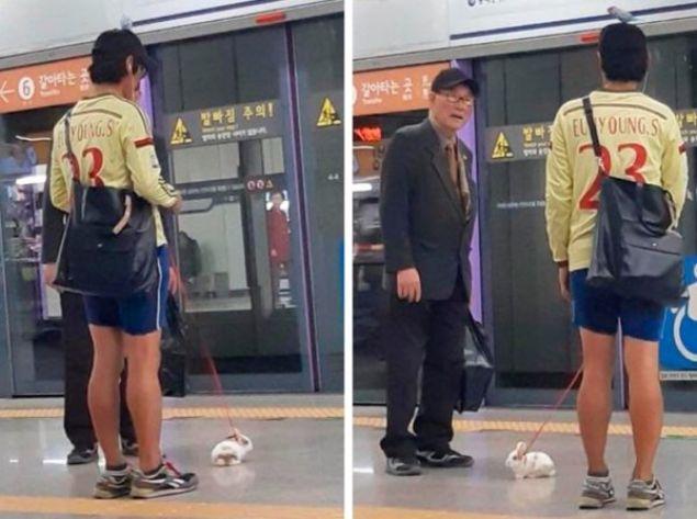 Bu çılgınlıkları ancak Japonya'da görebilirsiniz...