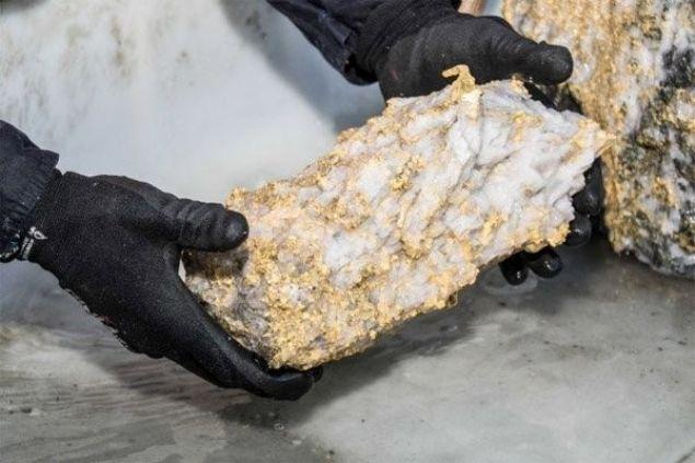 6,6 milyon dolarlık altın kaya bulundu