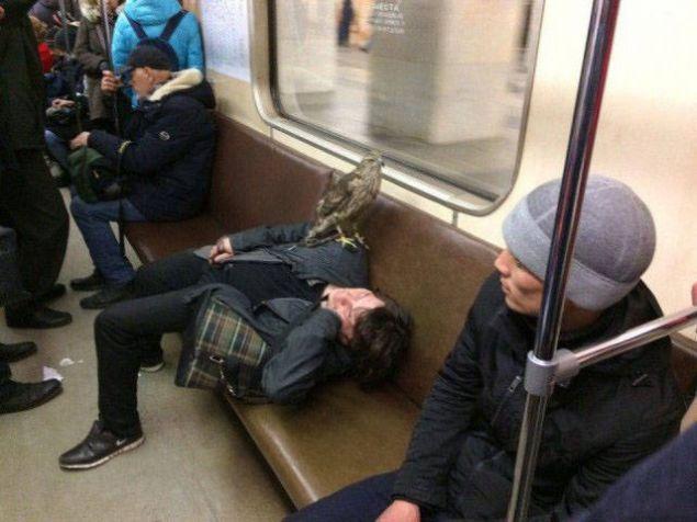 Rusya'dan görenleri şaşkına çeviren kareler