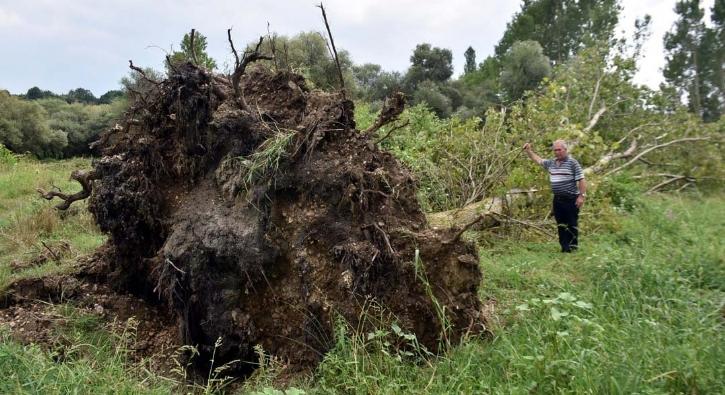 36 yıl sonra aynı felaket! 10 dakikada ağaçları kökünden söktü...