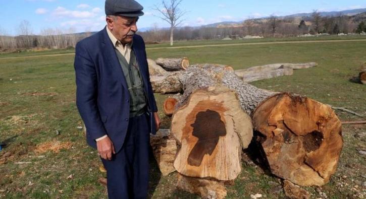 Ağacın gövdesine bakanlar şaştı kaldı