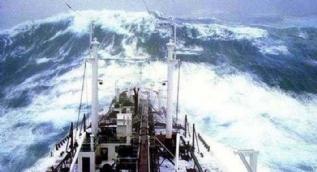 İşte deniz yaşamının en zor anları! Dev dalgalarla ölümcül mücadele