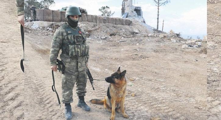 H'A'v takımı da Afrin'de