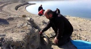 Balık tutarken fark etti... Tam 7.5 milyon yıllık!