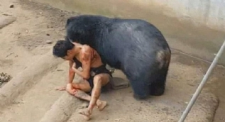 Hayvanların tüyler ürperten saldırları