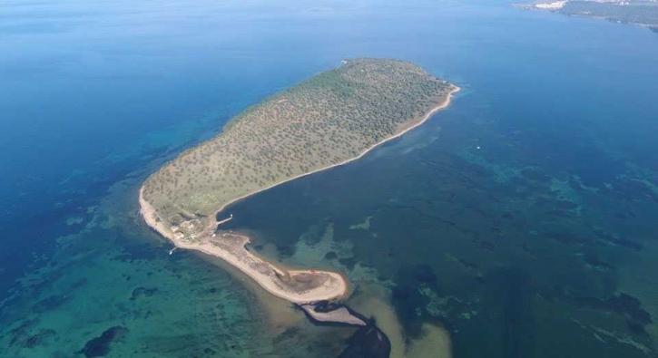 Balıkesir'deki bu ada satılık! İşte fiyatı