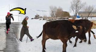 Milli sporcu hem çobanlık yapıyor hem de şampiyonalara hazırlanıyor