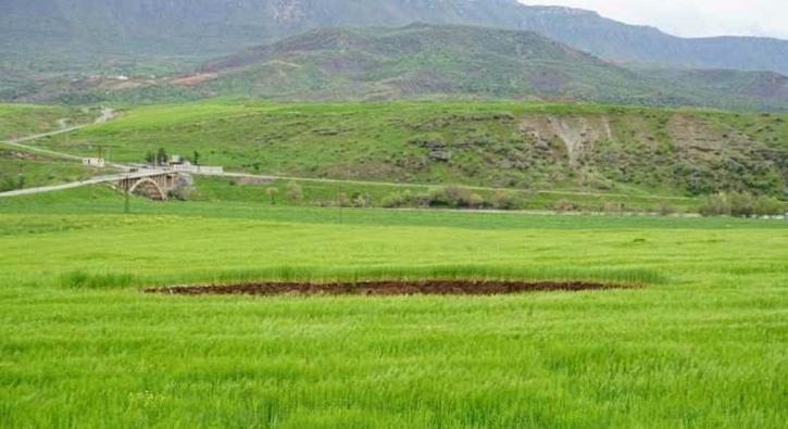 Siirt'te buğday tarlasında 40 metre çapında obruk oluştu