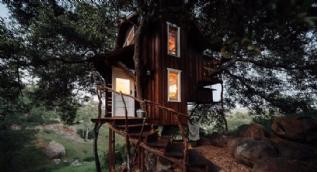 Ağaç ev görenleri şaşkınlık içinde bıraktı