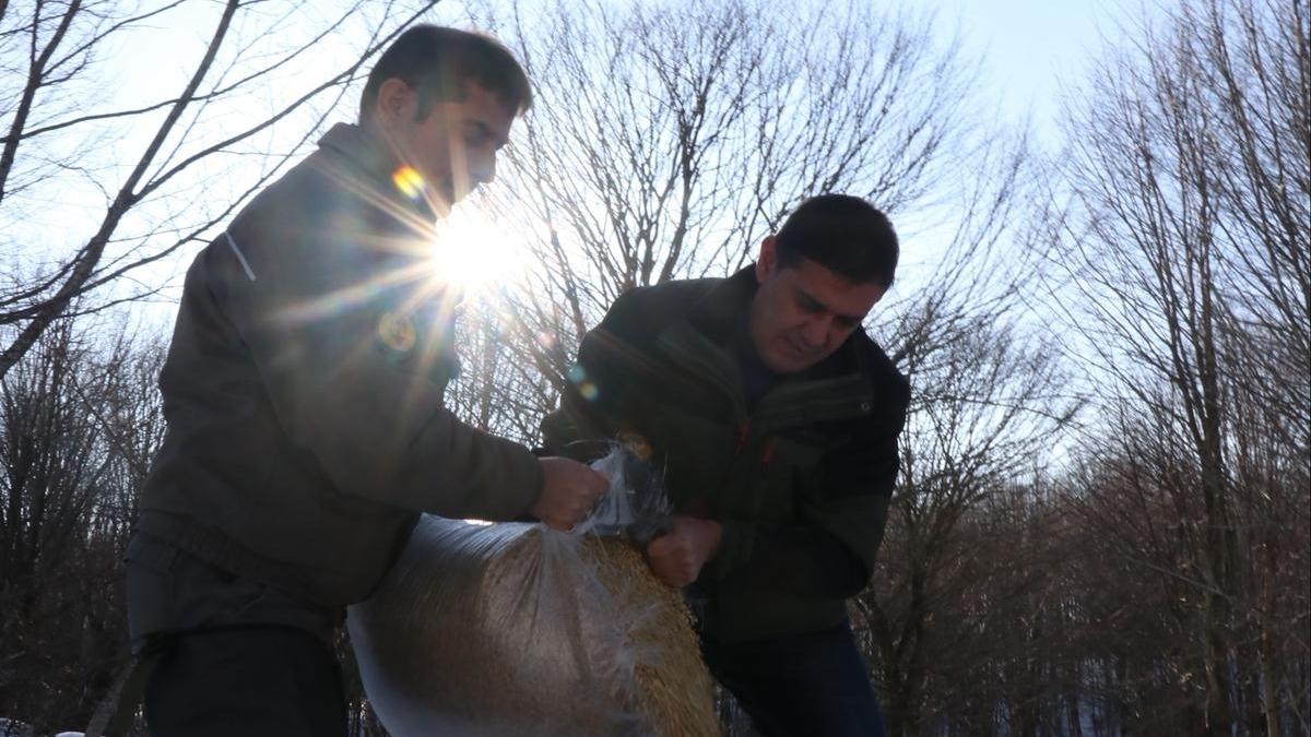 Yalova'da av ve yaban hayvanları için doğaya yem bırakıldı