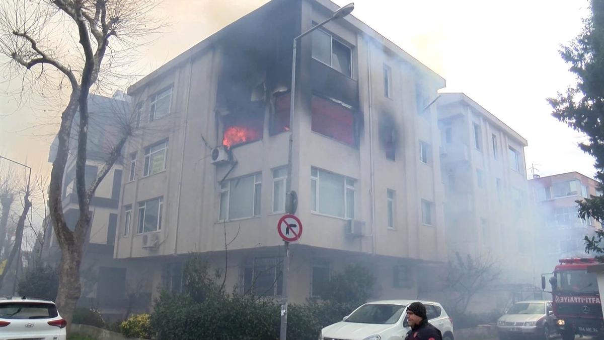 Bakırköy'deki yangında 10 kedi telef oldu