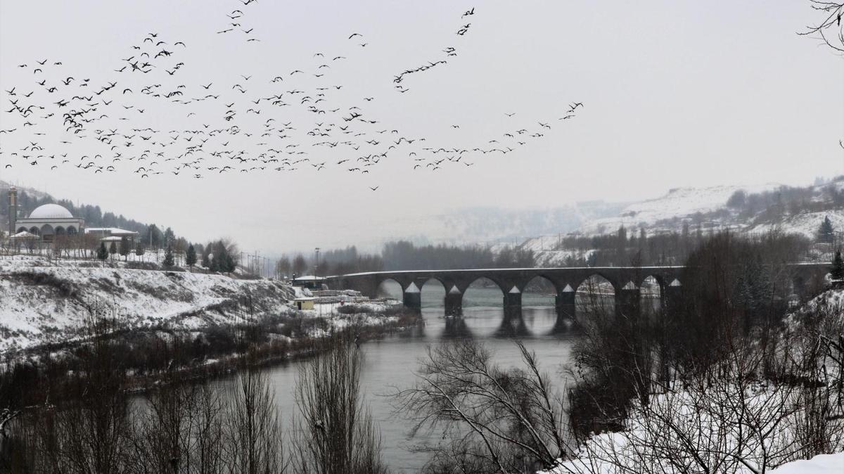 Diyarbakır Surları, Hevsel Bahçeleri ve On Gözlü Köprü, beyaza büründü