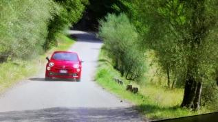 Yeni Fiat 500X'in fiyatları açıklandı