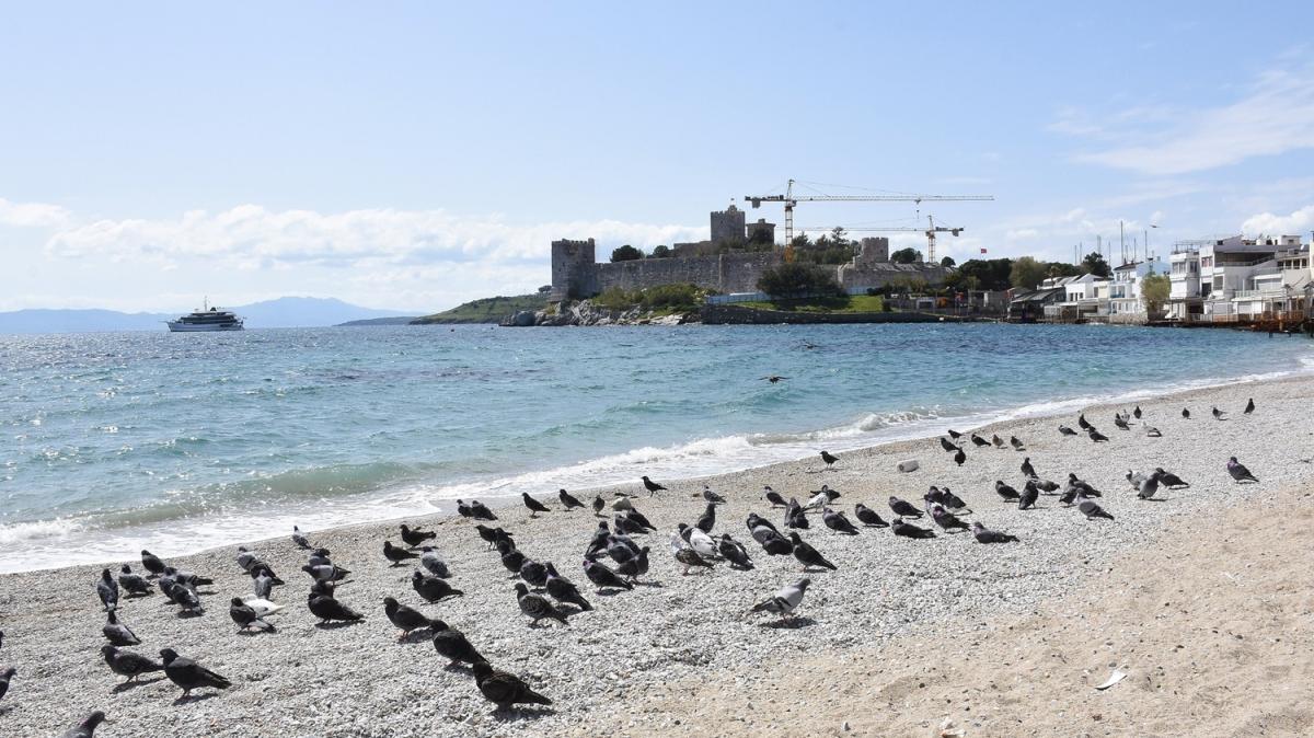 İnsanlar evlere çekildi... Dünyaca ünlü plajlar onlara kaldı