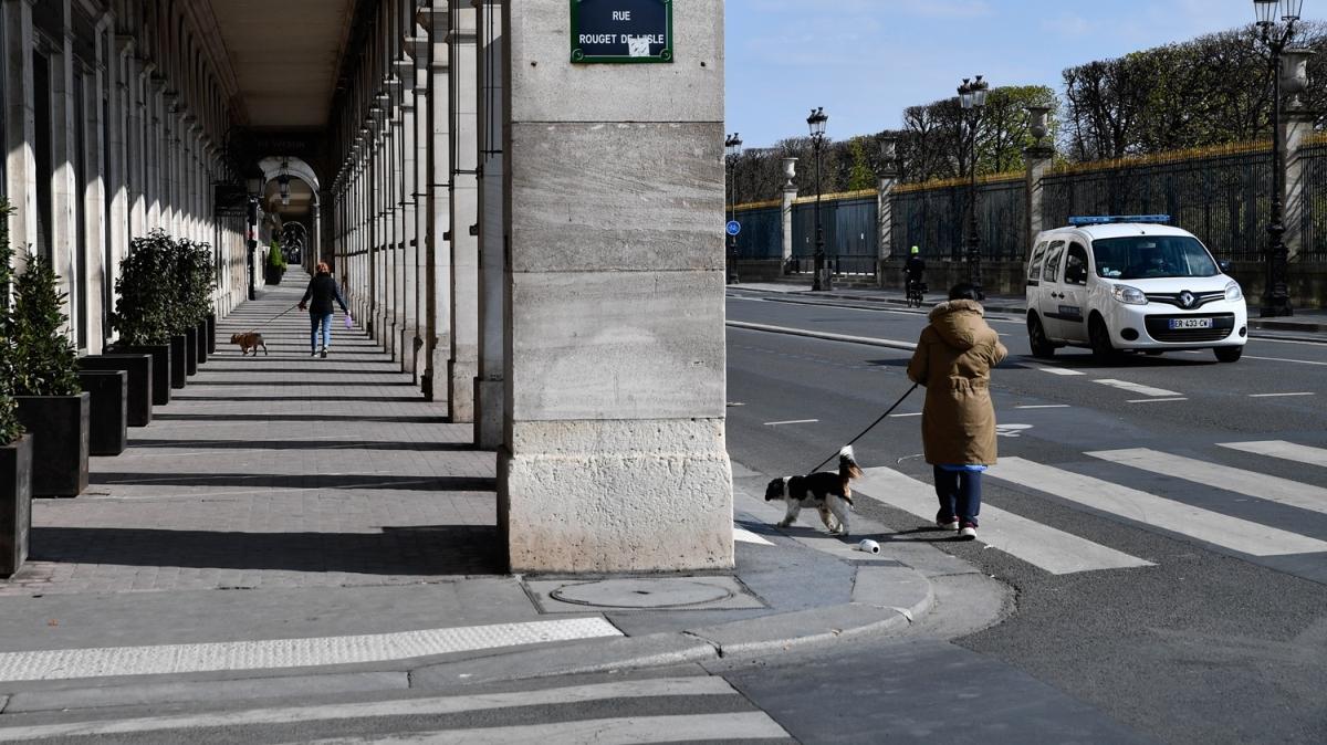 Fransa'da Kovid-19 nedeniyle ölenlerin sayısı 3 bin 523'e yükseldi