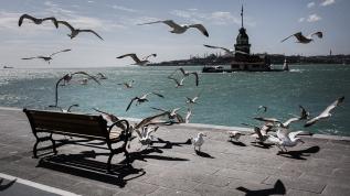 İstanbul'da 'koronavirüs sessizliği'