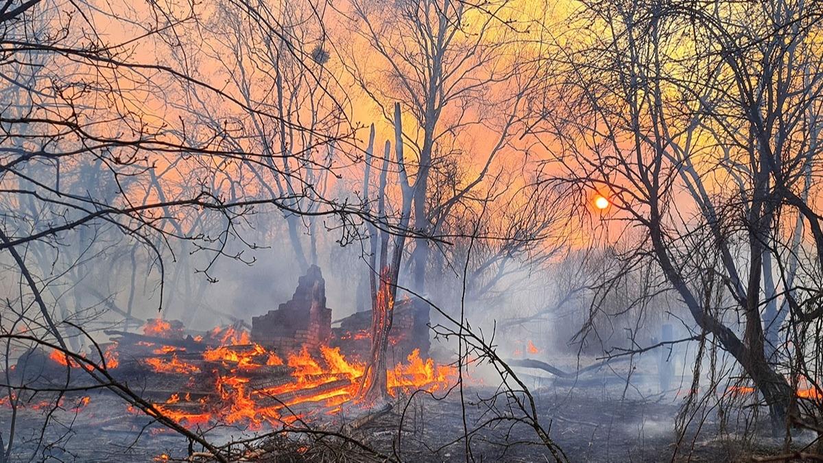 Çernobil Nükleer Santrali yakınındaki yangın büyüyor! Çernobil'deki yangın nükleer atık deposuna yaklaştı