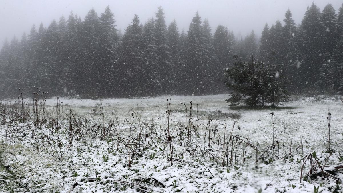 Bolu mayıs ayında beyaza büründü