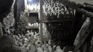Aylarca mağarada olgunlaştırılıyor... Rokfor peynirine rakip