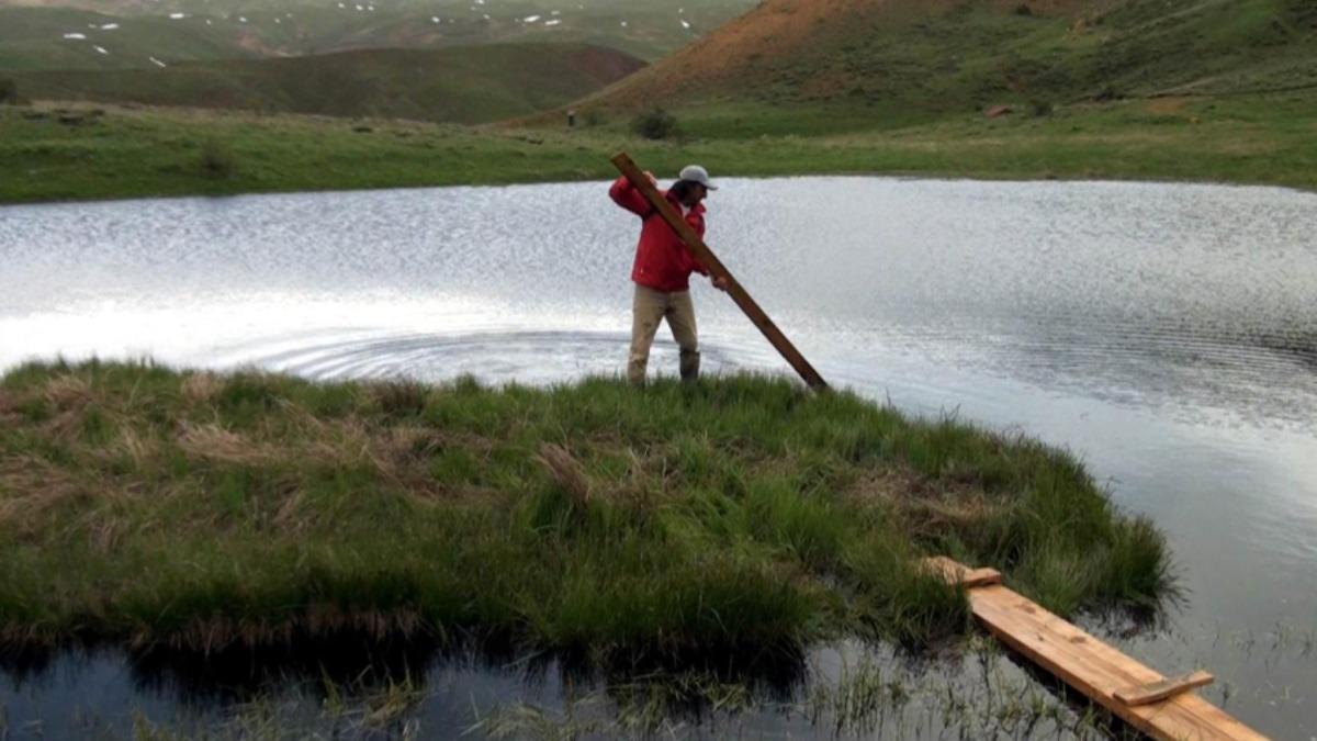Erzincan'da yüzen adalara yoğun ilgi: Yıl boyunca yer değiştiriyor!