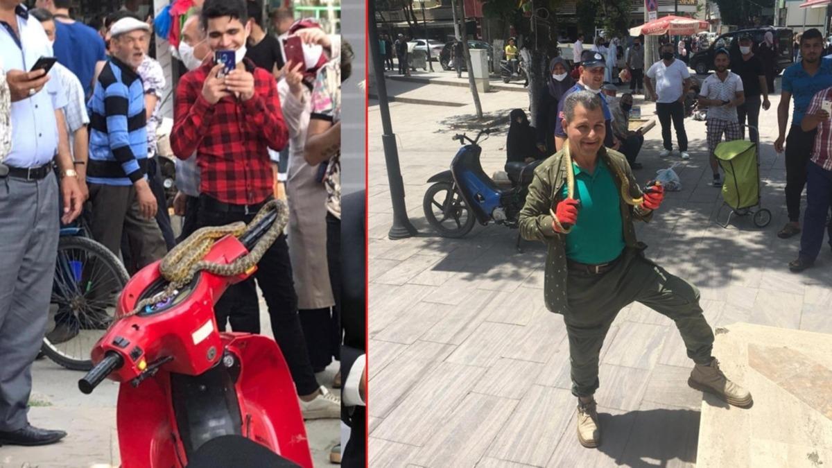 Bursa'da inanılmaz görüntüler! Motosikletin üzerinde yılanı alıp poz verdi