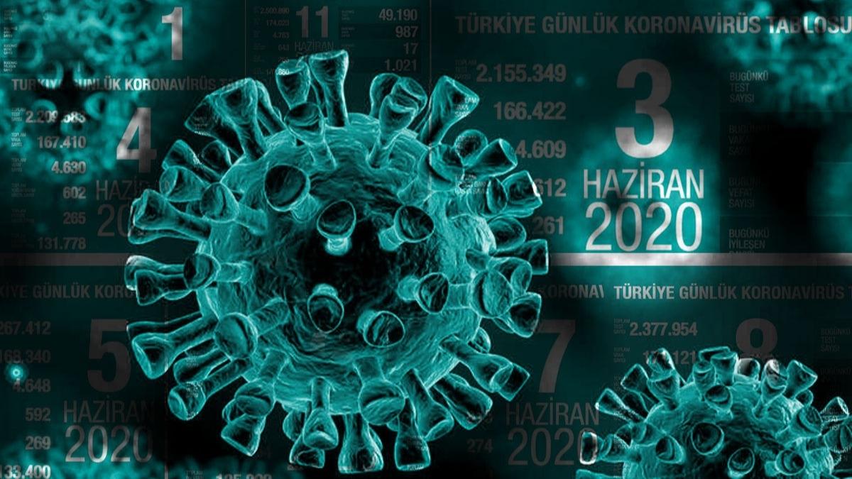 Haziran ayı gün gün Türkiye koronavirüs tablosu!