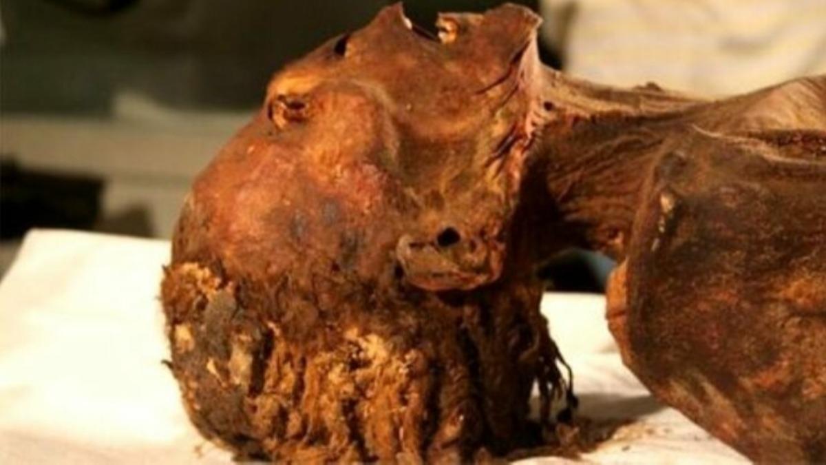 Prensesin yüzündeki 3 bin yıllık acı! Çığlık atan mumyanın sırrı çözüldü