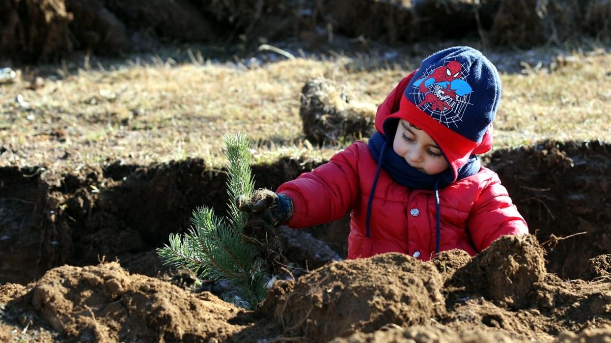 11 Kasım Milli Ağaçlandırma Günü: Geleceğe Nefes, Dünyaya Nefes