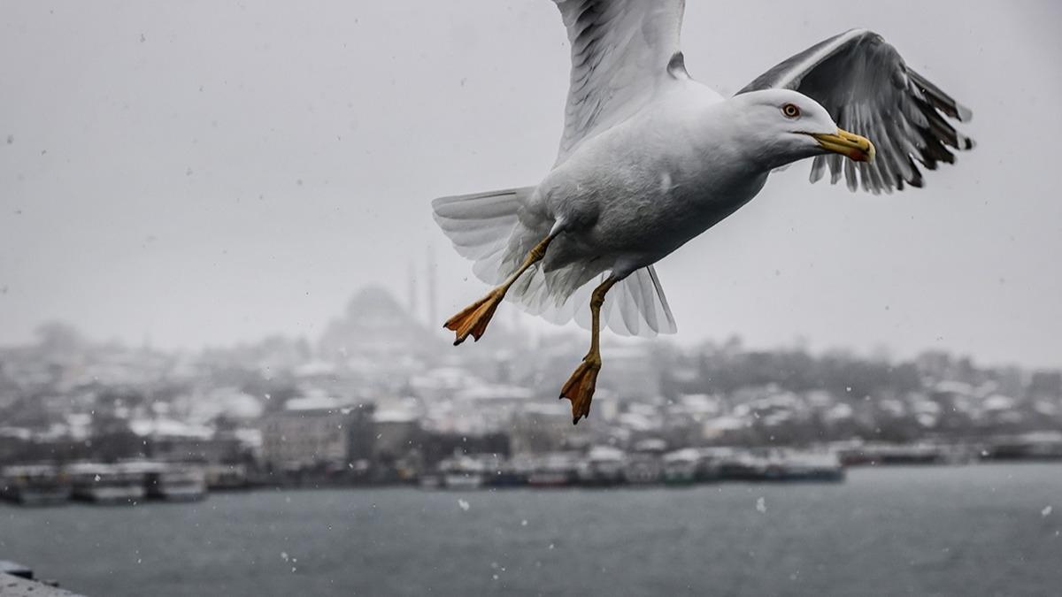 İstanbul'da kar yağışı ne kadar sürecek? İşte 5 günlük hava durumu