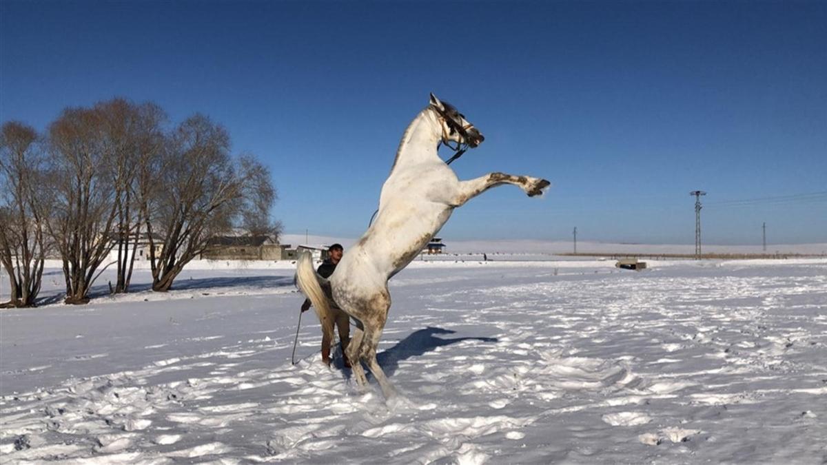 Poyraz'ın kar sevinci