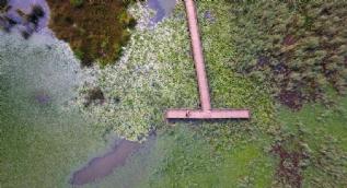 Abant Gölü'nden daha büyük... Doğaseverleri büyülüyor