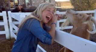 Kadınları sevmeyen sinirli hayvanlar