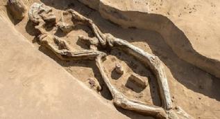 Sibirya'da bulunan iskelet şaşırttı