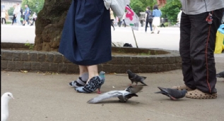 Güvercin ayakkabılar şaşkına çevirdi