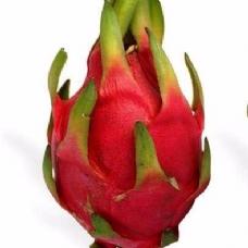 Dünyadaki en tuhaf 20 meyve